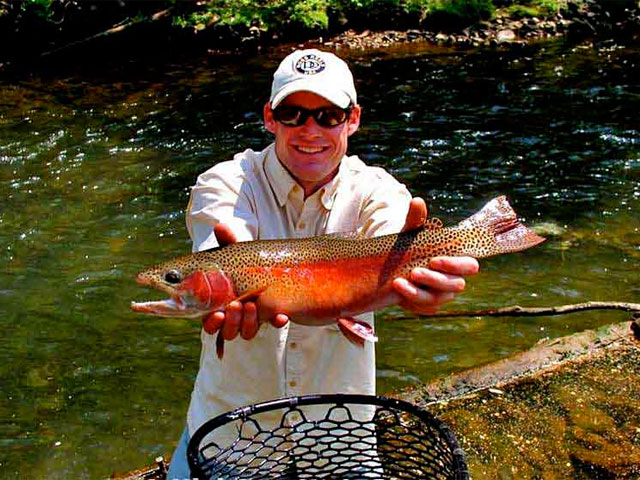 Iron mountain inn bed and breakfast b b attractions for Trout fishing in tn