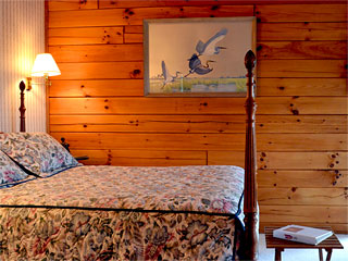 Iron Mountain Inn Bed and Breakfast - Appalachian Spring Room
