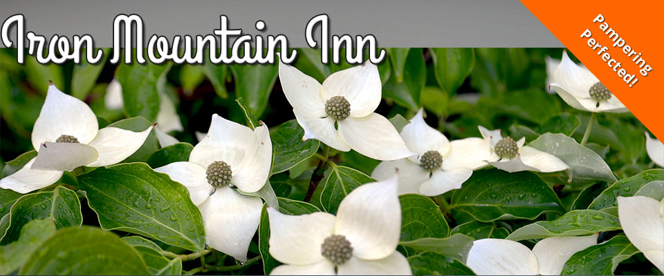 Iron Mountain Inn Bed and Breakfast - Watauga Lake - Bristol TN - Johnson City TN - Boone NC - Reviews